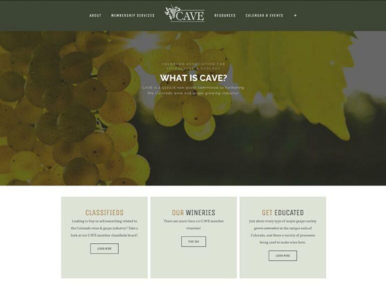 CAVE-Website-Build-Feature-1